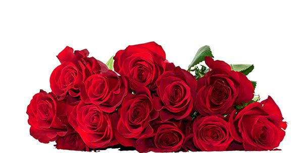 San Valentino: le rose